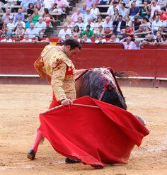 Don Benito desde su inauguración, han triunfado: Juli, Talavante, Perera, Morante, Ponce, Ferrera... El 8 de septiembre