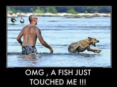 What a dog...lmao
