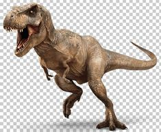 This PNG image was uploaded on October pm by user: alistairwench and is about Allosaurus, Bipedalism, Carnivore, Cretaceous, Dinosaur. T Rex Jurassic Park, Blue Jurassic World, Jurassic World Dinosaurs, Dinosaur Images, Dinosaur Pictures, Spinosaurus, The Good Dinosaur, Tiranosauro Rex, Fan Fiction