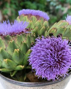 Articoke and its flowers  Artichoke, Vegetables, Flowers, Food, Meal, Floral, Eten, Vegetable Recipes, Meals