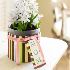 Wrapped Vase:   A quick wrap of decorative paper dresses up a simple cylinder vase planted with bulbs or filled with cut flowers. Pinked edges, a bit of ribbon, and a tag make the gift extra special.
