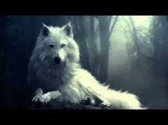 Resultado de imagem para homens com lobos