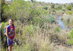 Cullinan Frogs-staproete | Van waterval tot verdwaal