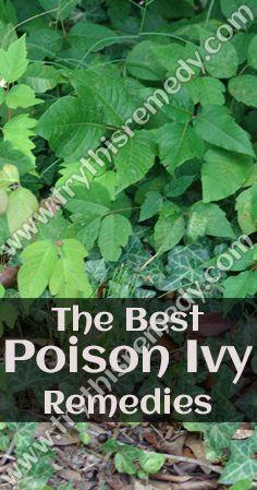 e60378598b45a33fa2dc987470967069 - How To Get Poison Ivy Oil Out Of Clothes