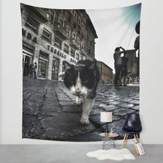 Close up portrait of a tough street cat in the city of Rome.  #cat #streetcat #animal #streetphotography #photography #gopro #wideangle #street #city #cityphotography #rome #italy #walltapestry #tapestry #wallart #homedecor
