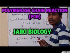 Jaiki biology: BIOTECHNIQUE PART10: POLYMERASE CHAIN REACTION  (P...