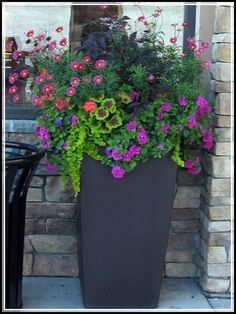 Vegetable garden planner containers for container gardening vegetables,things you need to start a vegetable garden planting small vegetable garden design,balcony gardens for condominiums plastic garden pots. Container Flowers, Flower Planters, Container Plants, Garden Planters, Container Gardening, Flower Pots, Tall Planters, Planters For Front Porch, Porch Urns