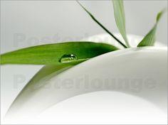 Tanja Riedel - Bambus auf Porzellan Bad Wellness