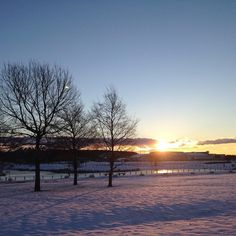 On instagram by zxmv0912 #landscape #contratahotel (o) http://ift.tt/1PgM4xT morning & sun. #blessed  #ご来光 #sun #日の出 #thanksgod #happy #beautiful  #goodday #sunlight  #love  #follow #girl #like4like #morning #pictureoftheday #sunrise #like #followforfollow    #lake #healing_ray #goodmorning#朝日 #癒し
