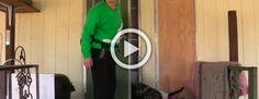 Esta señora tiene más de 1.000 gatos en su casa. Parece una locura hasta que ves dónde viven #viral