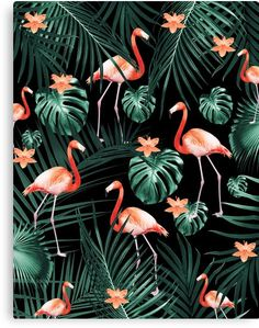 ' Tropical Flamingo Floral Night Pattern Canvas Print by anitabellajantz Flamingo Wallpaper, Iphone Wallpaper, Bad Pic, Pattern Photography, Thing 1, Tropical Decor, Canvas Prints, Art Prints, Pink Aesthetic