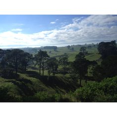 Visited Matamata, New Zealand.  This is area surrounding movie set of Lord of the Rings & upcoming Hobbit movie...STUNNING!!!  May 2012.  855.680.LOVE