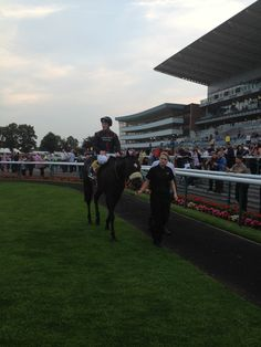 The winner of the Napoleons race at Doncaster Races