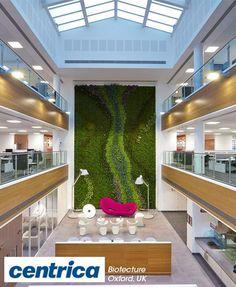Boas Du0027Ibiza, Red Boa With Erythrina, Salvia, Plumbago | Vertical Garden  And Green Walls | Pinterest | Salvia And Gardens