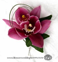 Auckland Wedding Flower Maroon Orchid Buttonhole