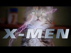 Cute Little Kitten Versions of Famous X-Men Characters