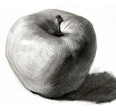 61 Ideas for fruit drawing pencil sketches Graphite Drawings, Pencil Art Drawings, Drawing Sketches, Drawing Ideas, Contour Drawings, Charcoal Drawings, Drawing Tips, Drawing Apple, Basic Drawing
