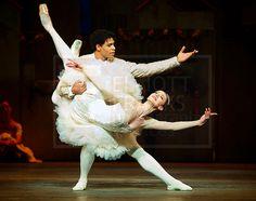 Marianela Nunez as Kitri with Carlos Acosta as Basilio in Don Quixote, Royal Ballet. Photo by Elliott Franks