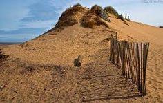 Formby sand dunes and Beach, Merseyside