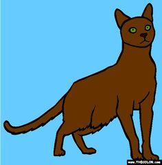havana brown cat online coloring page