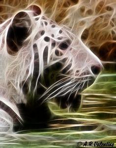 Fractalius animal Art | Tiger