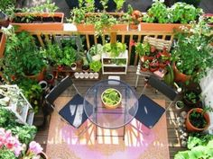 Privacy for the balcony - variants of wood, plants and awnings