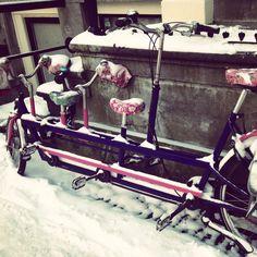 Family bike @ Amsterdam