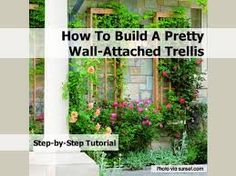 Image result for trellis and garden wall