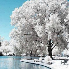 Üşümek için kışa,  Neşelenmek için yaza,  Hüzünlenmek için sonbahara ne gerek...  İklim insanın içinde...❄⛅☔