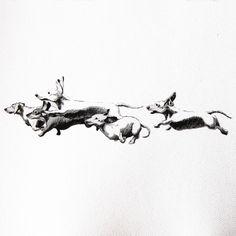 Running Dachshunds....
