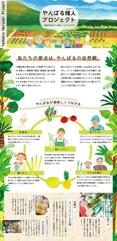 Charming and inviting Japanese flyer design for a farming project. Print Layout, Web Layout, Layout Design, Flyer Design, Dm Poster, Vegetable Design, Leaflet Design, Illustrations And Posters, Web Design Inspiration