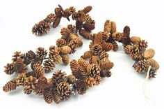 "Beautiful 60"" Pine Cone Garland"