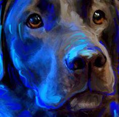 Black Lab Labrador Retriever Dog Art