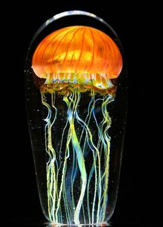 The jellyfish tank is the first environment I always run to when visiting an aquarium. I'm drawn to the luminous quality of the underwater creatures' bodies, as well as their inclusion in a scene that appears to need no sources of artificial light. Glass artist Rick Satava was also capti