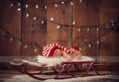 Newborn christmas card photo setup option