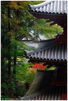 Ganzen-ji (岩船寺) Kyoto, Japan by Damien Douxchamps