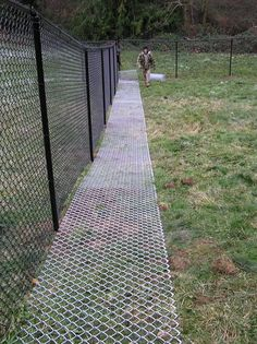 """the grass will grow through the ground matting and won't even be visible after awhile.no dog is going to get through feet wide, 9 gage fencing used as a """"ground mat"""". Do keep dogs from digging under fence Dog Backyard, Backyard Fences, Chickens Backyard, Backyard Landscaping, Landscaping Ideas, Yard Fencing, Fenced In Backyard Ideas, Dog Friendly Backyard, Horse Fencing"""