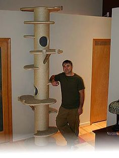 cat tree made from concrete tubes Cat Climbing Tree, Climbing Wall, Cat Climber, Diy Cat Tree, Cat Run, Cat Towers, Cat Shelves, Cat Playground, Cat Enclosure