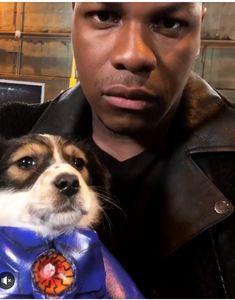John Boyega, Puppies, Guys, Fictional Characters, Instagram, Celebrities, Cubs, Celebs, Fantasy Characters