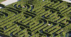Simbolo di potere, oggetto di divertimento, incantatore e traditore. Dal mitico labirinto di Cnosso, popolato dalle figure leggendarie di Teseo, Icaro, Arianna e dal mostruoso Minotauro, in avanti, i...