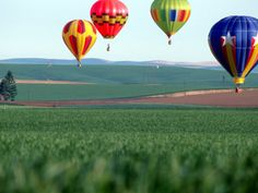 Colorful Hot Air Balloons Float over a Wheat Field in Walla Walla, Washington, USA Photographic Print