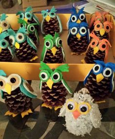 Pinecone owls                                                                                                                                                                                 More