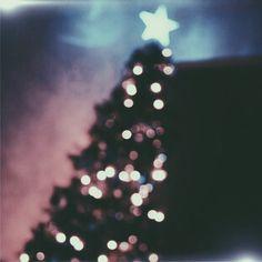 e607d5fee3d3bf4d4463f2023c02fb6e  christmas photos winter christmas
