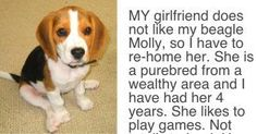 Man's Girlfriend Gives Ultimatum, Says Either The Dog Goes Or She Goes