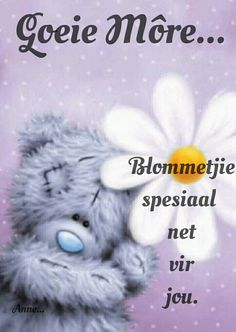 Afrikaanse Quotes, Goeie More, Good Night Quotes, Tatty Teddy, Good Morning Wishes, Funny Messages, Birthday Wishes, Beautiful Pictures, Faith