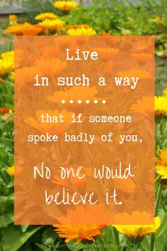 Quote: Live in such a way that if someone spoke badly of you, no one would believe it.  Love this quote! Be nice. Be considerate. Be thoughtful. Be honest.  It's not so hard to do but by living a considerate life, you make a big impression on others without even knowing it. See more great quotes on our blog or pinterest board.