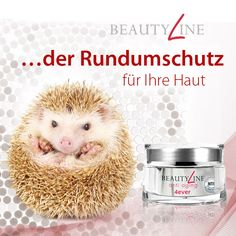 DSC Hannover Fitline PM International |   Beautyline