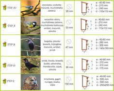 budki lęgowe dla ptaków - Szukaj w Google