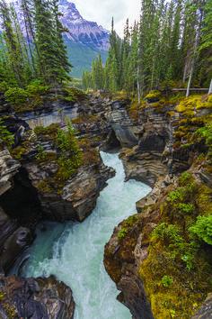 Glacier streams wind through the Alaskan terrain.