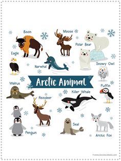 Arctic Animals Cartoon On White Background Stock Vector (Royalty Free) 520949701 Artic Animals, List Of Animals, Animal Habitats, Arctic Fox, Animal Posters, Orcas, Snowy Owl, Killer Whales, Cool Pets